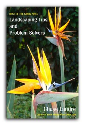 cover Landscaping Tips & Problem Solvers