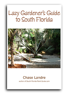 cover Lazy Gardener's Guide
