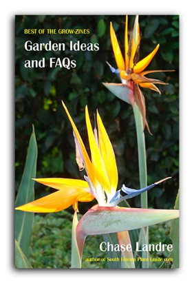 cover Garden Ideas & FAQs