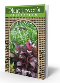 cover Plant Lover's Collecion