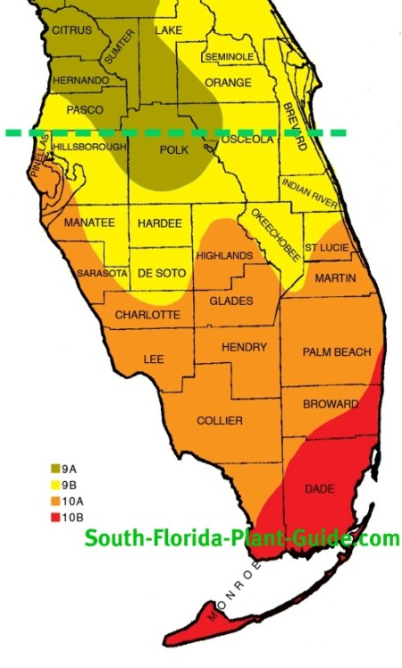 Plant zone map south florida plant zone map sciox Image collections