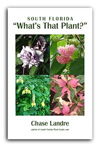 ebook cover What's That Plant